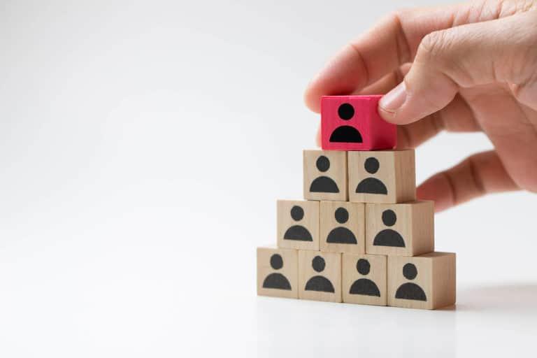 מבנה ארגוני